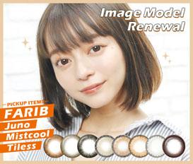 Model Renewal