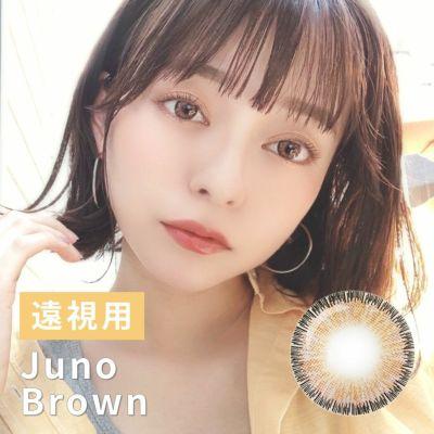 遠視用 Juno Brown